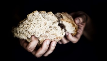 Woman's hands holding a pieces of bread.